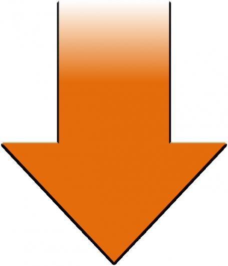 S_ya_orange600